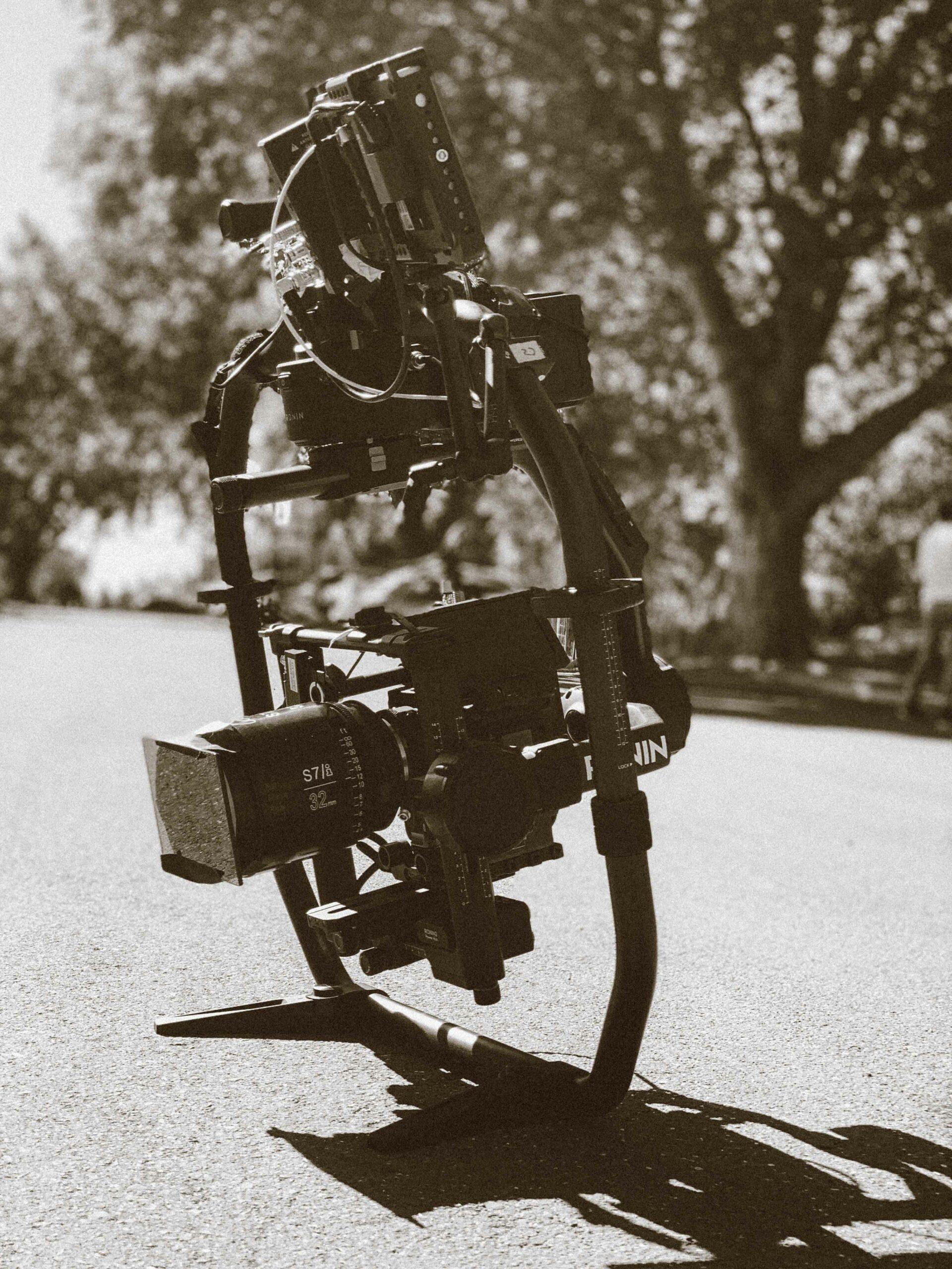 SockdailyCameron-Zayec-Headshot-19